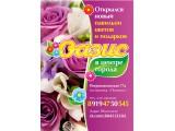 "Логотип Салон цветов и подарков ""Оазис"""